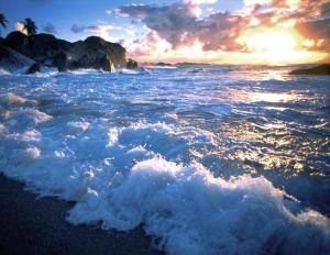 Среди моря водки
